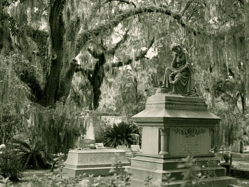 Savannah Haunted Places, Vigilantes for Justice Southern Cozy Mystery. Alan Chaput Author of Southern Mystery novels, Women Mysteries, Southern Fiction Novels.
