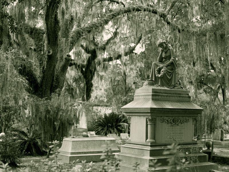 Savannah Mystery Novels by Alan Chaput Bonaventure Cemetery