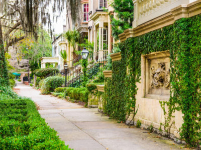 Savannah is a walkable city. Stroll the sidewalks and experience the city. Smell the flowers. Hear the horse-drawn carriages. See the dappled sunlight raining down through the oak canopy.